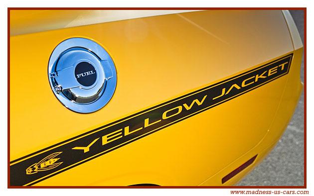 dodge challenger srt 8 yellow jacket 2012. Black Bedroom Furniture Sets. Home Design Ideas