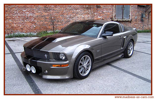 occasion ford mustang shelby eleanor